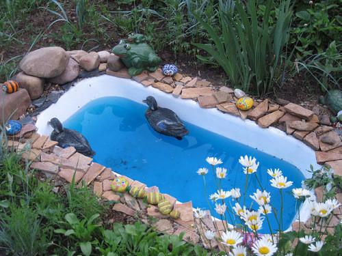 Как сделать бассейн на даче своими руками из подручных материалов фото 86
