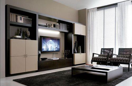 Nicht Weniger Gebräuchlicher Moderner Stil, Der Die Schaffung Eines  Funktionalen Innenraums Beinhaltet. Oft Ist Das Wohnzimmer Mit Der Küche  Kombiniert.